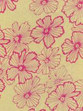 Ivory Pink - Kenikir