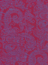 Pink Purple - Bunga Bokor
